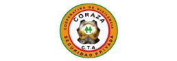 CORAZA-SEGURIDAD-CTA-1.png