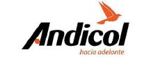PRODUCTORA-ANDINA-DE-COLORANTES-SAS-1.png